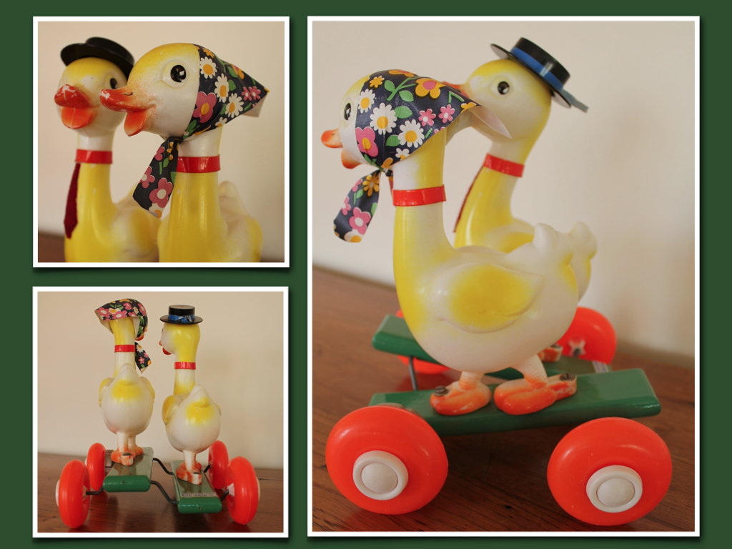 canards-educalux-vintage