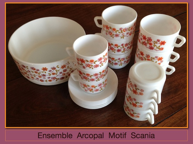 ensemble-arcopal-scania